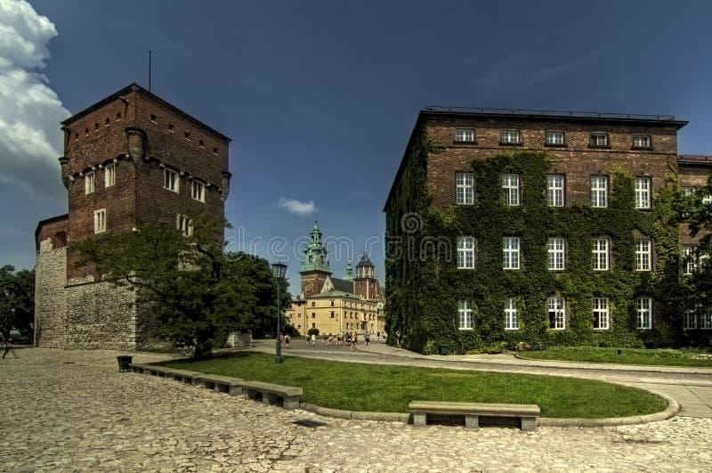 Castelo de Wawel imagens de stock royalty free