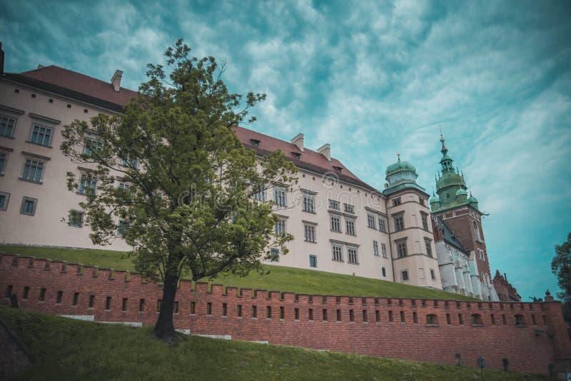 Castelo de Wawel em Krakow fotografia de stock royalty free