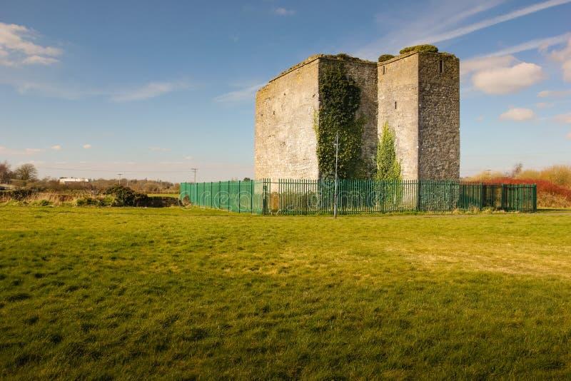 Castelo de Woodstock Athy Kildare ireland imagens de stock