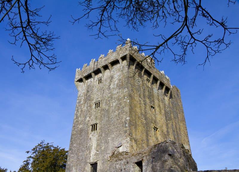 Castelo do Blarney fotos de stock