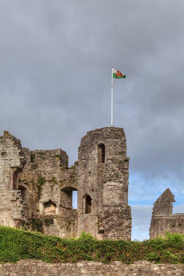 Castelo do Raglan no Gales do Sul fotografia de stock royalty free
