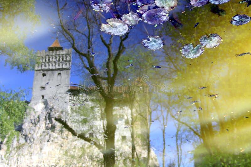 Castelo do ` s de Dracula em Romênia com reflexão calma da água fotografia de stock royalty free
