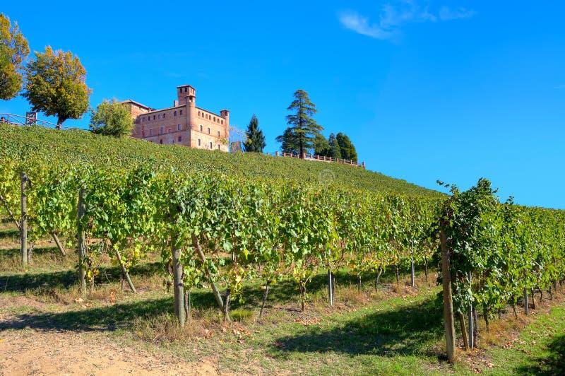 Castelo e vinhedos antigos em Piedmont, Itália. imagem de stock royalty free