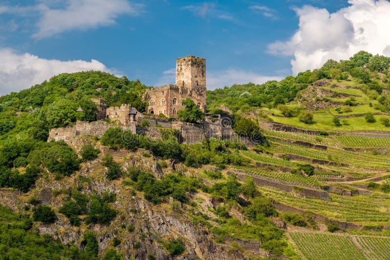Castelo e vinhedos de Gutenfels no vale do Reno perto de Kaub, Alemanha imagens de stock royalty free