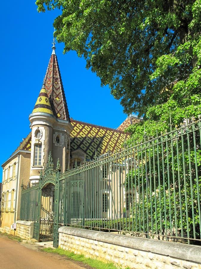 Castelo francês com o telhado telhado modelado fotografia de stock
