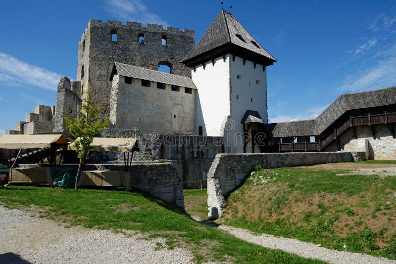 Castelo medieval de Celje em Eslovênia imagens de stock royalty free