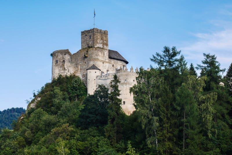 Castelo no monte acima do lago fotografia de stock royalty free