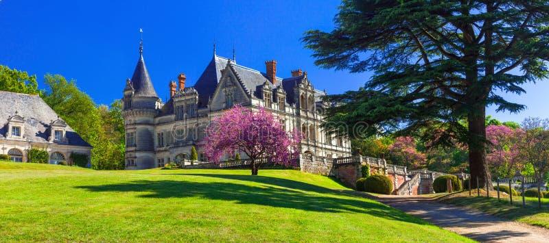 Castelos bonitos românticos de Loire Valley, França fotografia de stock royalty free