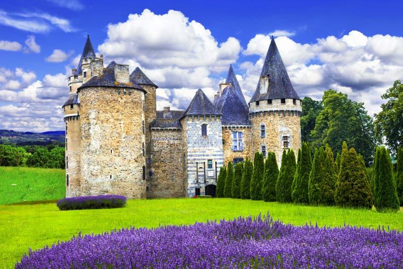 Castelos feericamente de França fotografia de stock