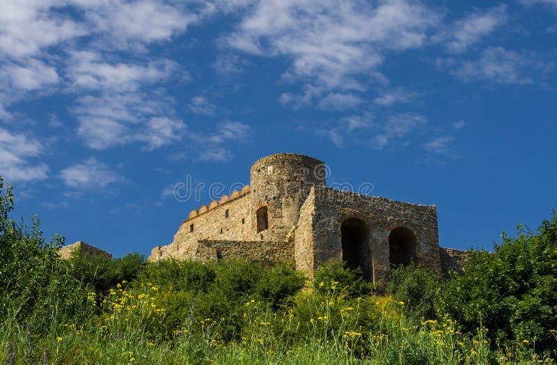 Castillo de Devin en Eslovaquia imagen de archivo libre de regalías