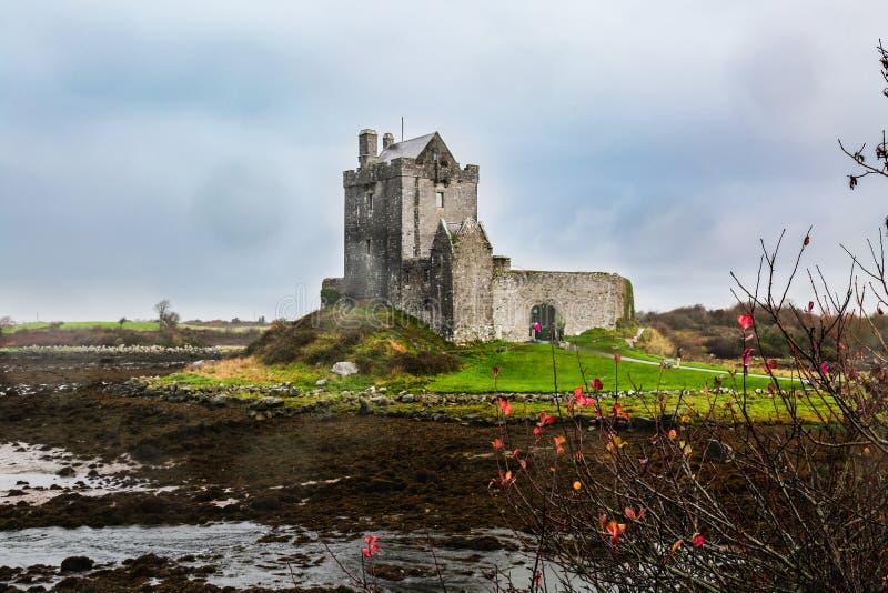 Castillo de Dunguaire en la orilla de Océano Atlántico en Irlanda foto de archivo libre de regalías