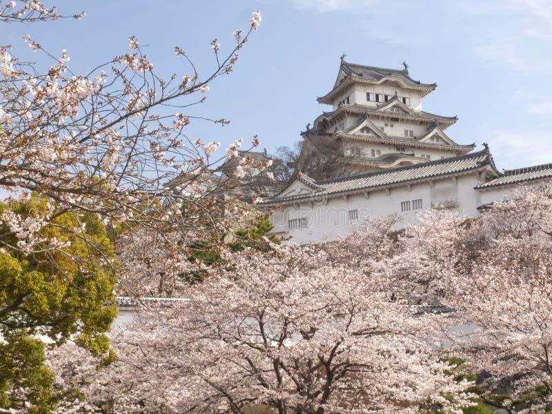 Castillo de Himeji en la estación del flor de cereza fotos de archivo libres de regalías