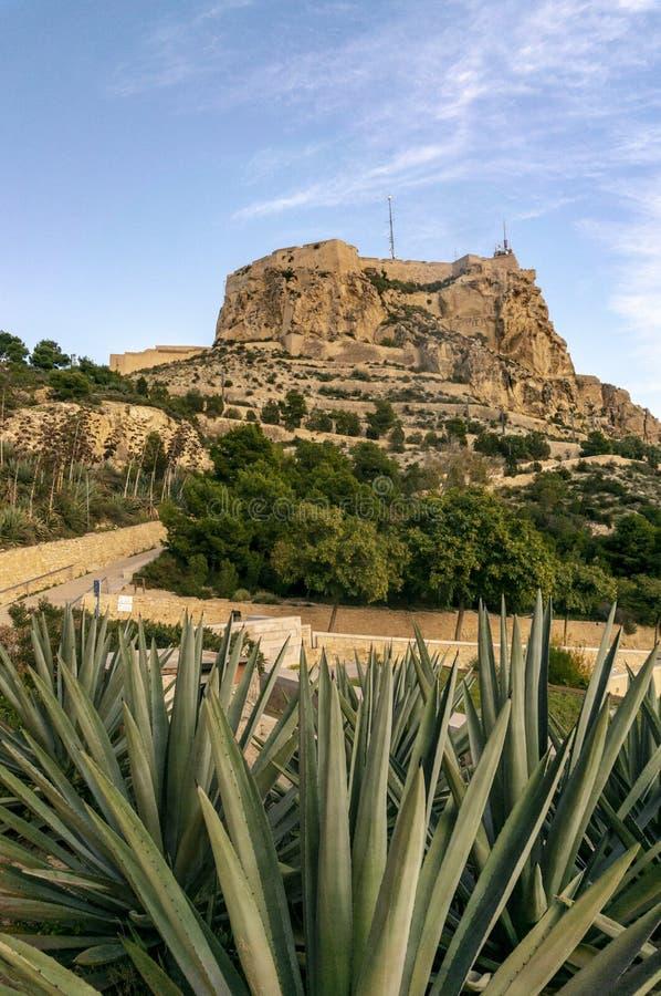 Castillo de Jultomten BÃ ¡ rbara, Alicante arkivfoton