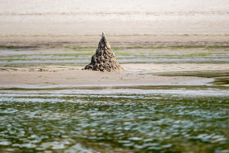 Castillo de la arena en una playa fotos de archivo libres de regalías