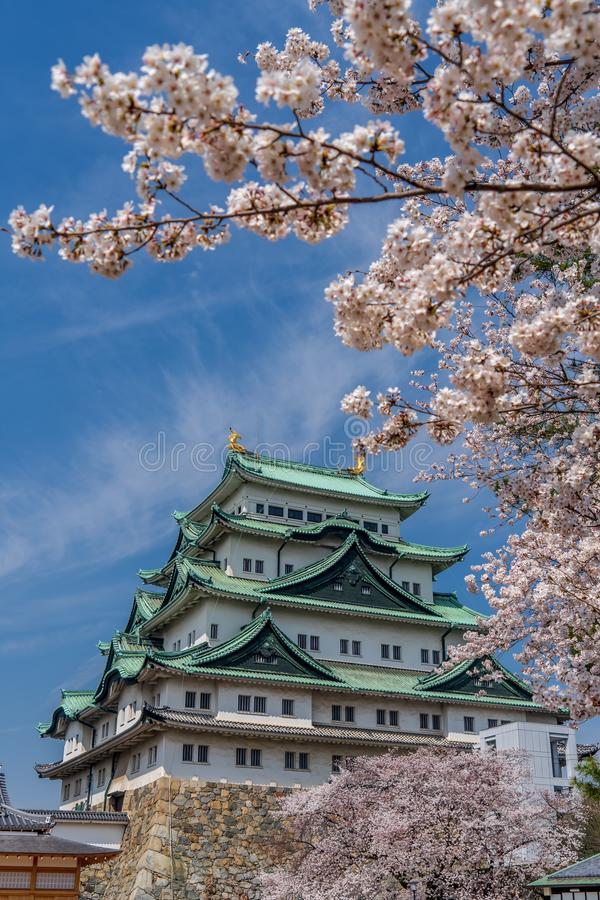 Castillo de Nagoya durante la primavera foto de archivo