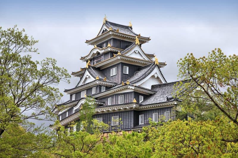 Castillo de Okayama, Japón fotografía de archivo libre de regalías