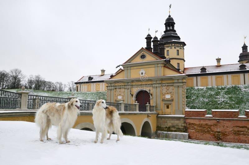 Castillo de Radziwill en Nesvizh en Bielorrusia fotos de archivo libres de regalías