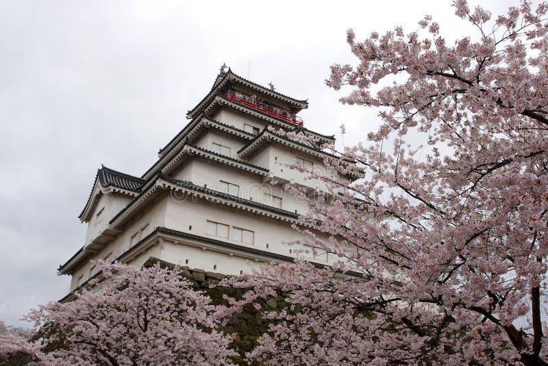 Castillo de Tsurugajo en resorte foto de archivo libre de regalías