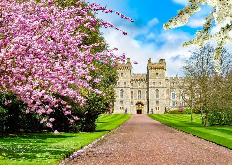 Castillo de Windsor en la primavera, suburbios de Londres, Reino Unido imagenes de archivo
