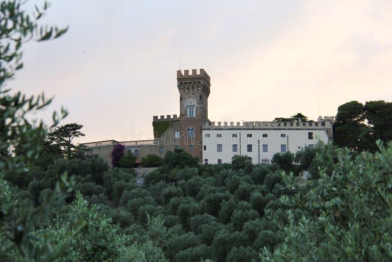 Castillo en el headland-3 fotos de archivo libres de regalías