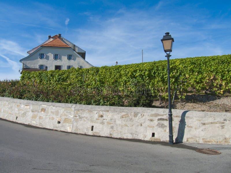Castillo en los viñedos de Lavaux, Suiza fotografía de archivo libre de regalías