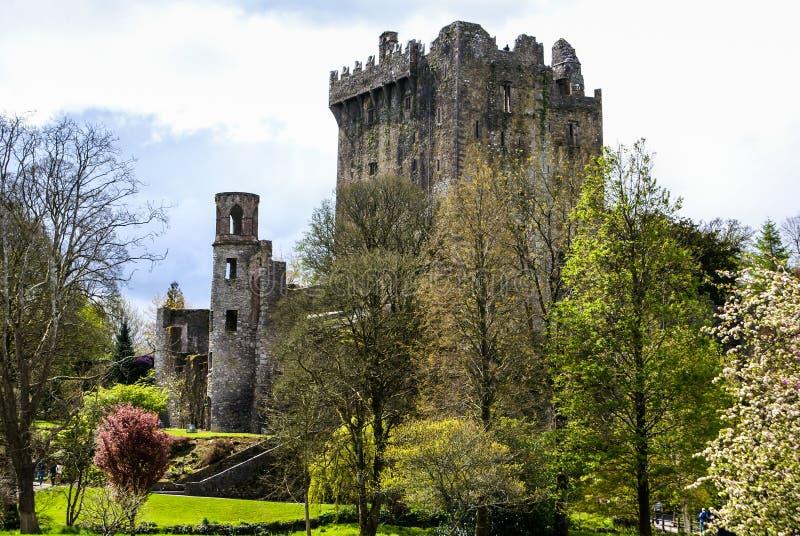 Castillo irlandés de la lisonja, famoso por la piedra de la elocuencia. Ira fotografía de archivo
