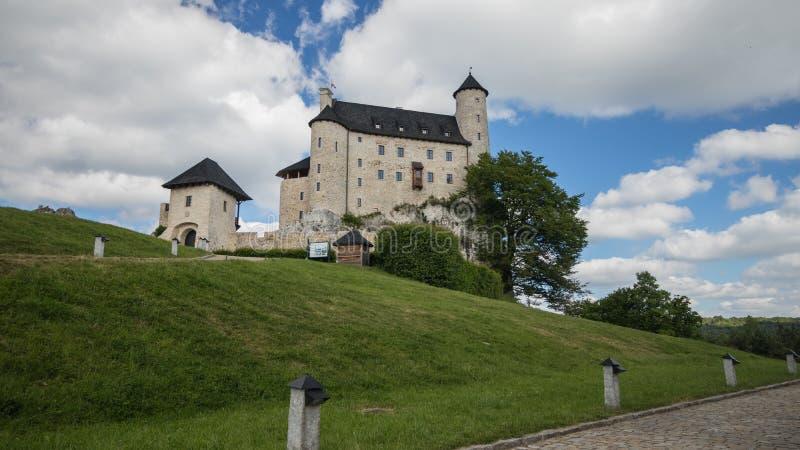 Castillo medieval de la defensa en la colina fotografía de archivo libre de regalías