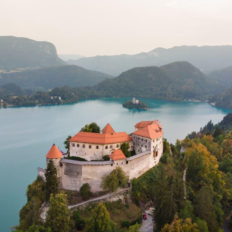 Castillo medieval en el lago Bled en Eslovenia fotos de archivo libres de regalías