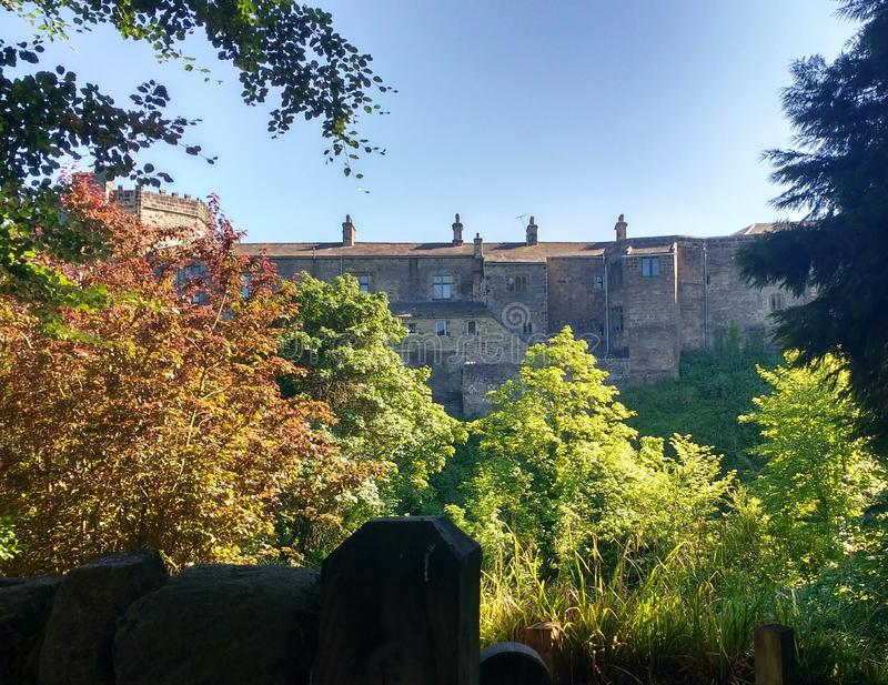 Castillo medieval enmarcado por los árboles de la primavera fotografía de archivo