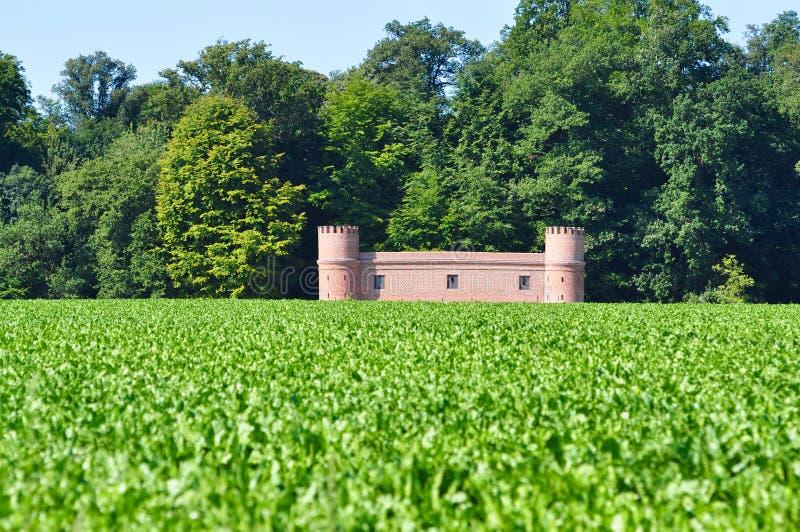 Castillo ocultado imagen de archivo libre de regalías