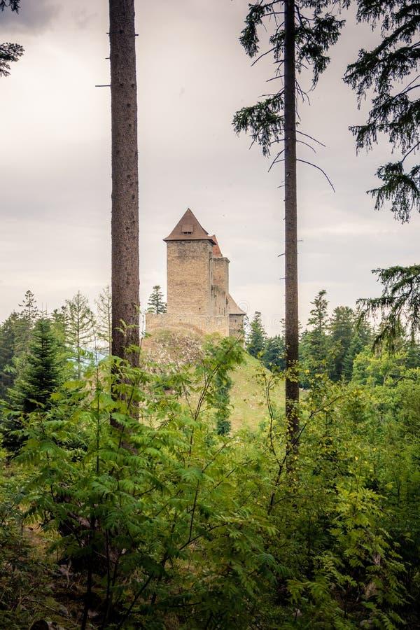 Castillo ocultado en el bosque imagen de archivo libre de regalías