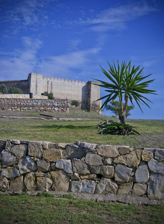 Castillo, pared de piedra y palma imágenes de archivo libres de regalías