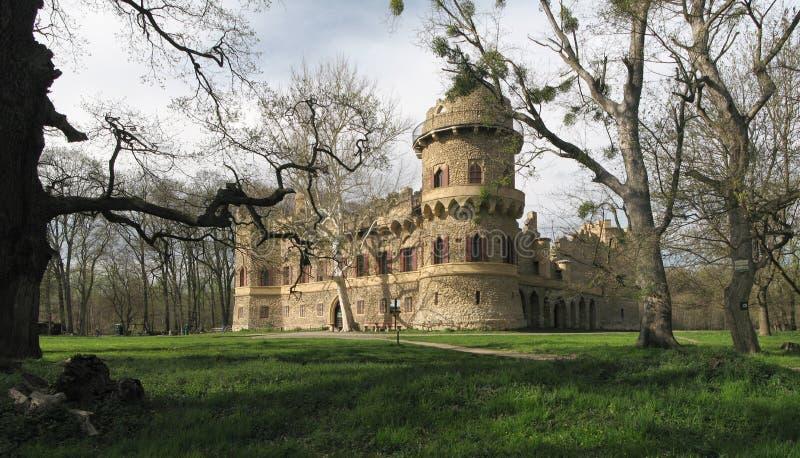 Castillo romántico del hrad del od Januv de la ruina imágenes de archivo libres de regalías