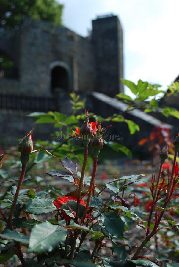 Castillo Svojanov, República Checa imagenes de archivo