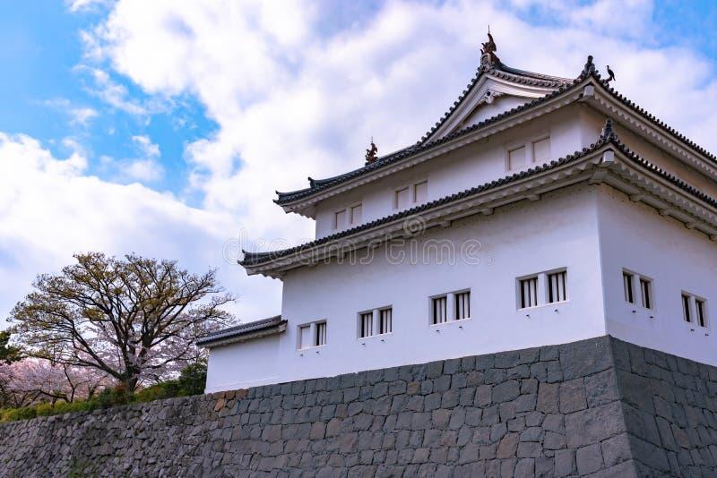 Castillo Tatsumi-Yagura de Sunpu durante las flores de cerezo fotos de archivo libres de regalías