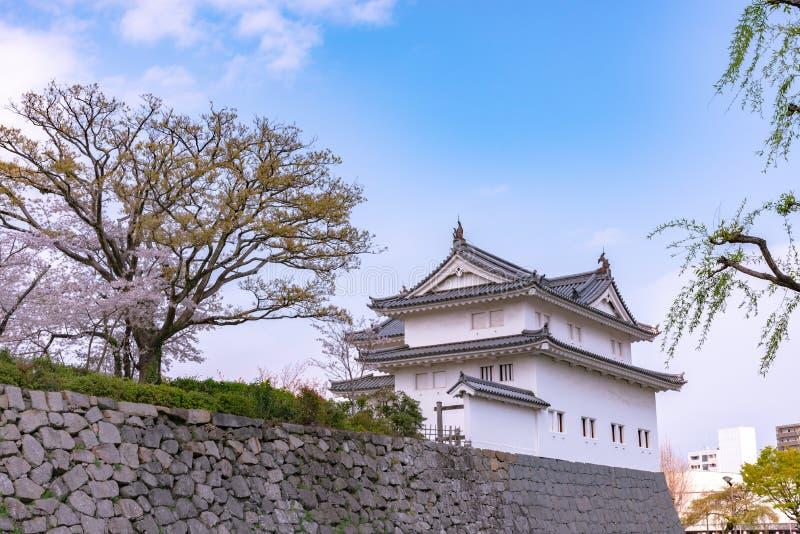 Castillo Tatsumi-Yagura de Sunpu durante las flores de cerezo fotografía de archivo libre de regalías