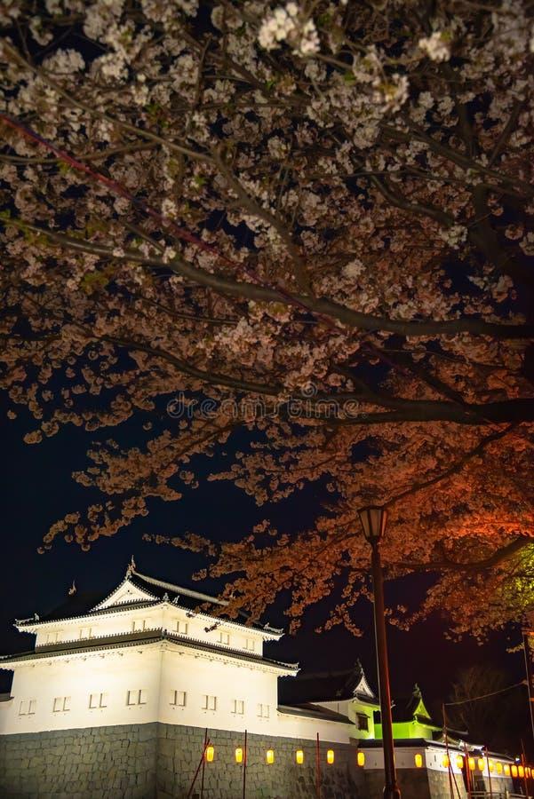 Castillo Tatsumi-Yagura de Sunpu durante las flores de cerezo imágenes de archivo libres de regalías