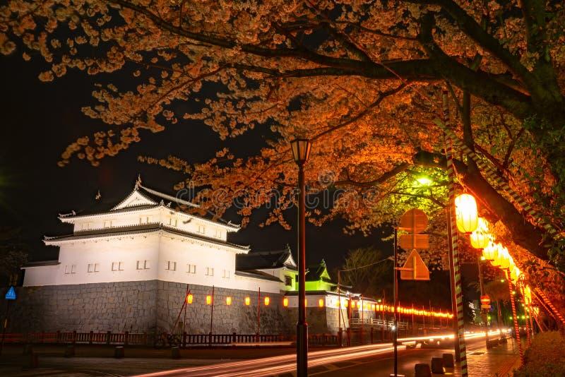 Castillo Tatsumi-Yagura de Sunpu durante las flores de cerezo foto de archivo