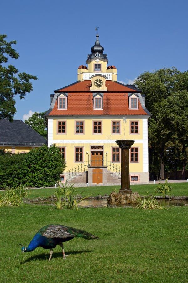 Castillo Weimar del belvedere imagen de archivo libre de regalías