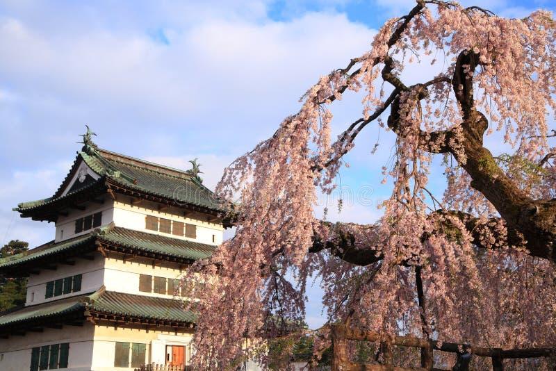 Castillo y flores de cerezo de Hirosaki imágenes de archivo libres de regalías