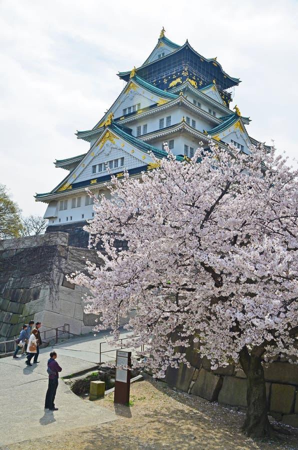 Castillo y Sakura de Oasaka imágenes de archivo libres de regalías