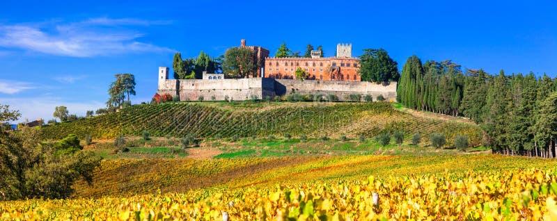 Castillos y viñedos de Toscana, región del vino de Chianti foto de archivo libre de regalías