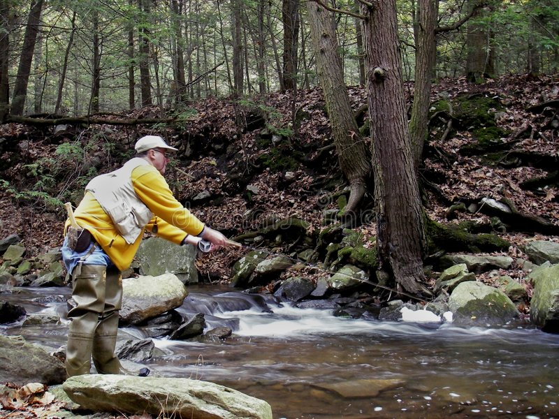 Casting For Trout Royalty Free Stock Images