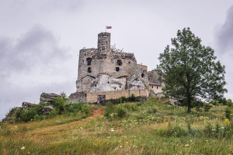 Castle σε Mirow στοκ εικόνες με δικαίωμα ελεύθερης χρήσης