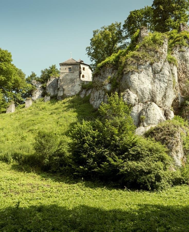 Castle στο εθνικό πάρκο Ojcow στοκ εικόνα