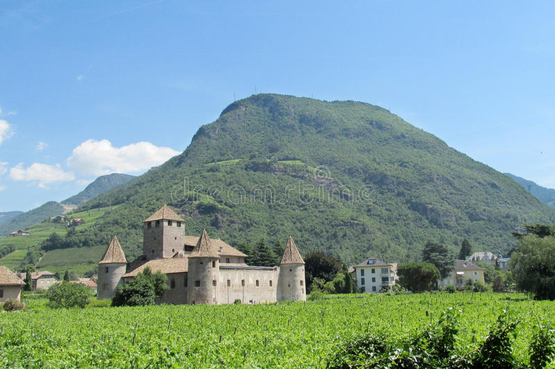 Castle in Bolzano, Italy. Medival castle in Bolzano, Italy. Fortificated wall and tower among the high green trees, clear ble sky. Medival castle tower among royalty free stock photo