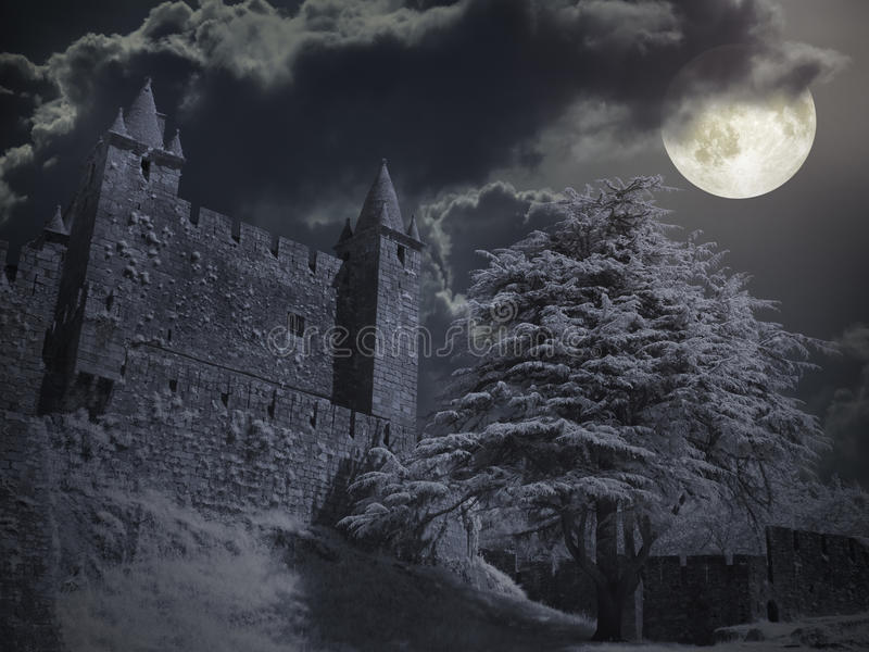 Castle in a full moon night royalty free stock photos