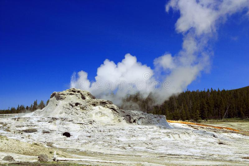 Steam rising from Castle Geyser, Yellowstone National Park, Wyoming royalty free stock photo