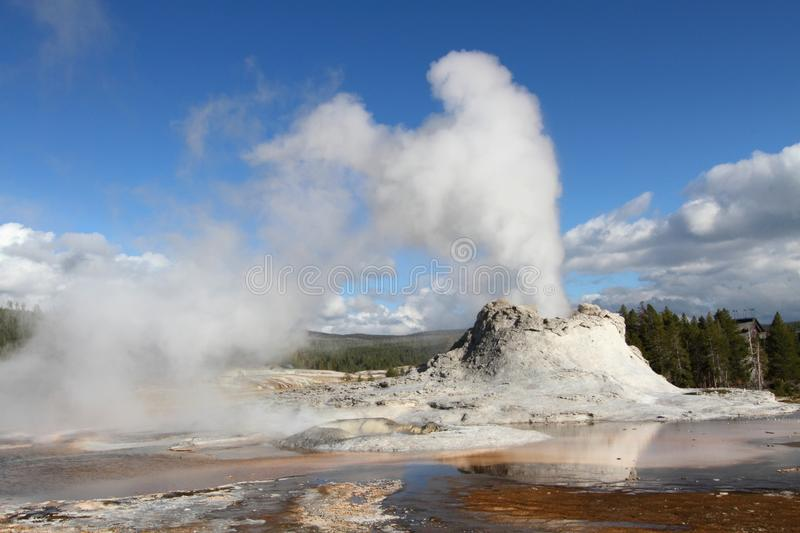 Castle Geyser in Yellowstone. National Park in Wyoming royalty free stock photos