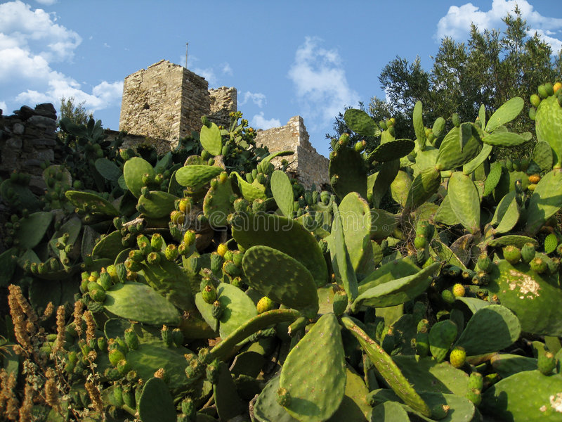 Castle in Greece royalty free stock photos